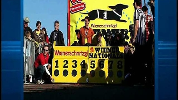 [DGO] Weiner Dog Races