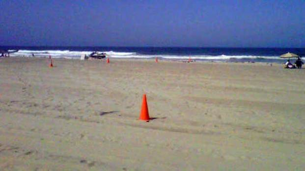 Mission Beach Closed After Shark Sightings: Images