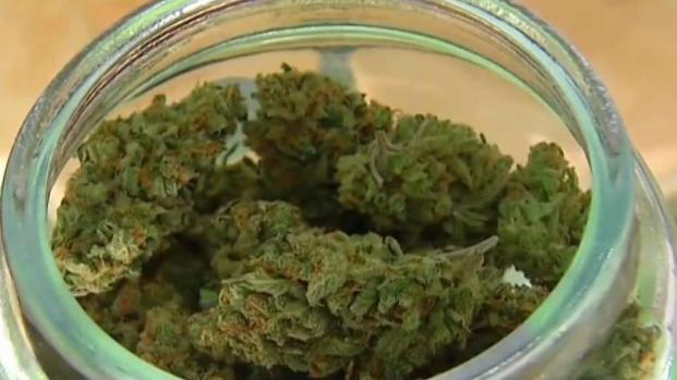 [DGO] Proposed Cannabis Tax in San Diego