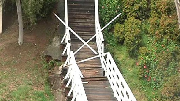 Falling Tree Smashes Historic Bridge