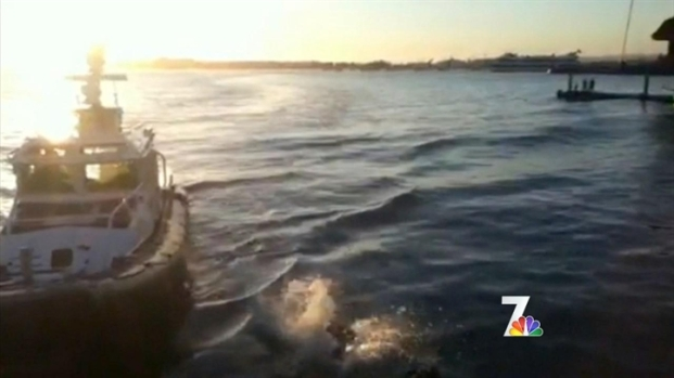 [DGO] Man Rescued from San Diego Bay