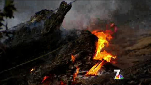 [DGO] Residents Jolted by Wynola Brush Fire