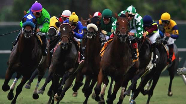 Breeders Cup Headed To Del Mar In 2017 Nbc 7 San Diego