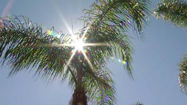 [DGO] Experts Warn of Dangerous Heat, Conditions