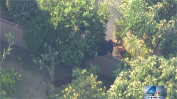 [LA] All Quiet in Pacoima After Pursuit Suspect Search