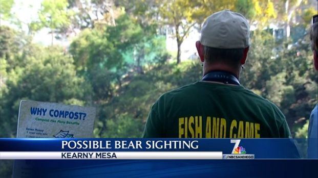 [DGO] Multiple Reports of Bear Sighting in San Diego