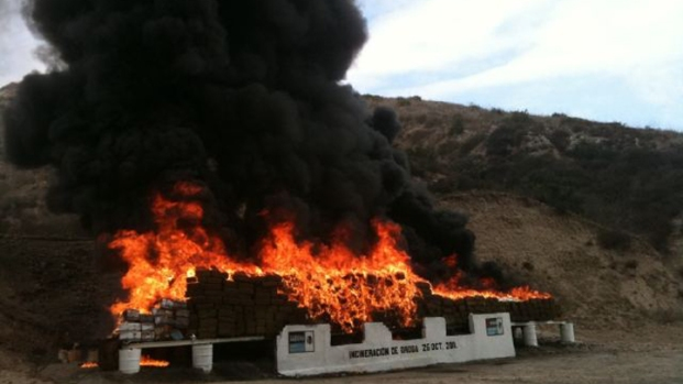 [DGO] 28 Tons of Drugs Set on Fire
