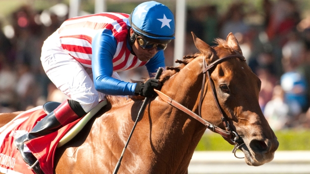 Meet the Kentucky Derby's Top 10 Contenders