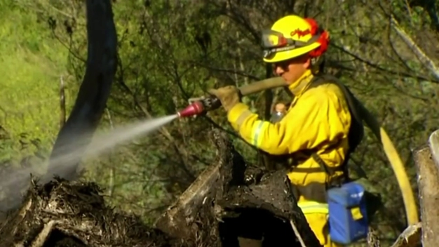 Cal Fire Suspends Burn Permits in San Diego County