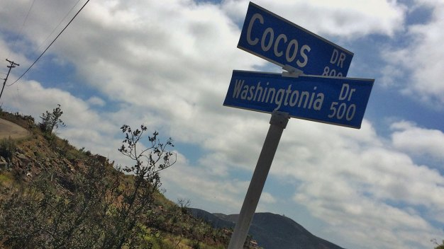 Cocos Fire Arsonist Gets Community Service