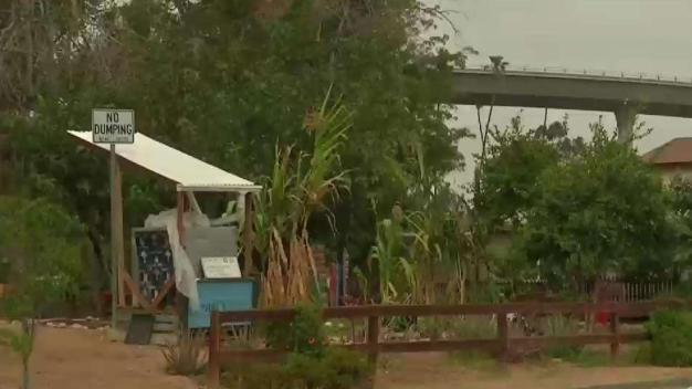 Soil Test Shows Toxins Present in National City Community Garden