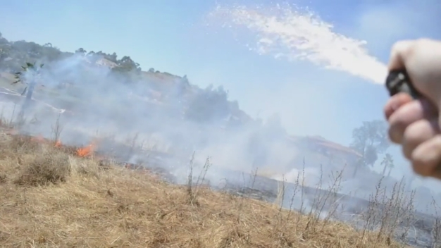 Neighbor Helps Hose Down Escondido Brush Fire Near His Home