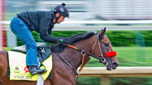 Kentucky Derby: Nyquist Early 3-1 Favorite