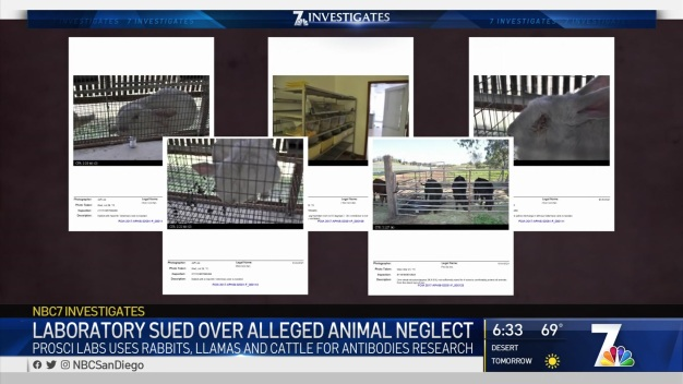Laboratory Sued Over Alleged Animal Neglect