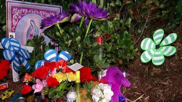 Mom Calls for Safer Streets After 5-Year-Old Son's Death