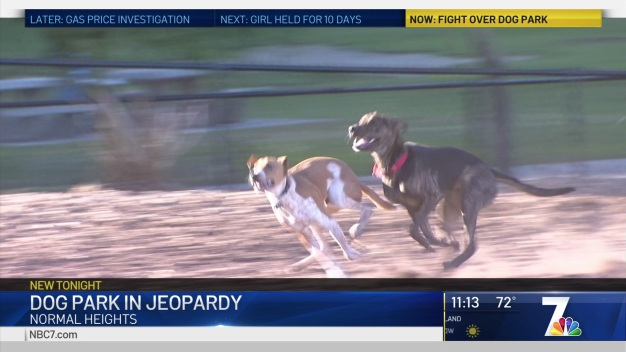 Normal Heights Dog Park in Jeopardy