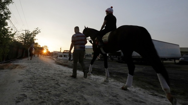Plenty of Preakness Intrigue Without a Derby Winner