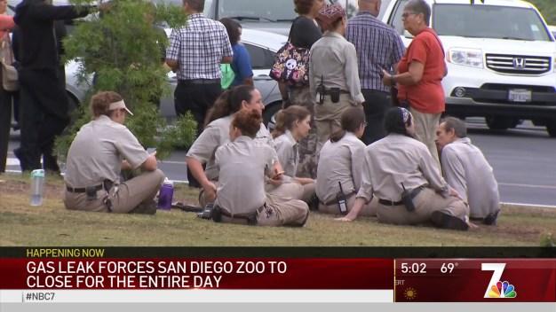 Latest on Gas Leak Impacting San Diego Zoo, Balboa Park