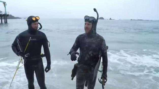 Spearfishing and Seafood Adventures