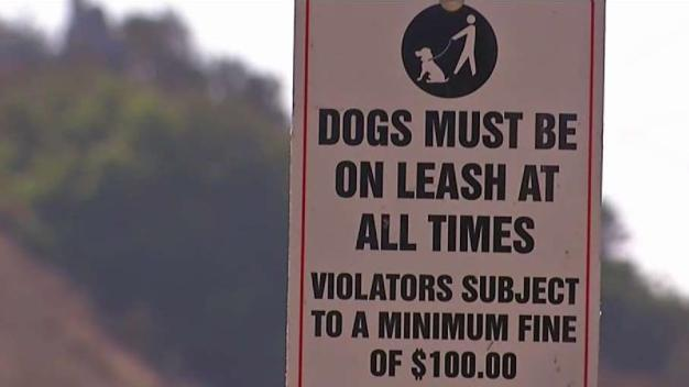 Vista Tries 'Off-Leash' Policy at Community Park