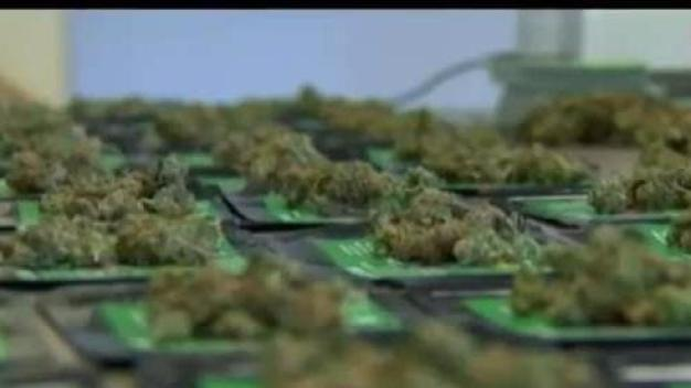 Local Veterans Could Receive Free Medical Marijuana