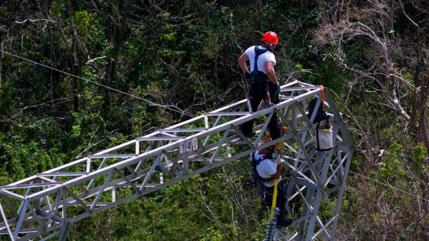Whitefish Energy Halts Work in Puerto Rico Over $83M Owed