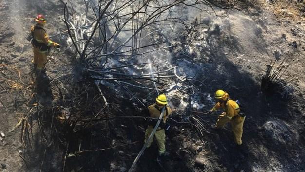Unusual Santa Anas Create Critical Fire Danger