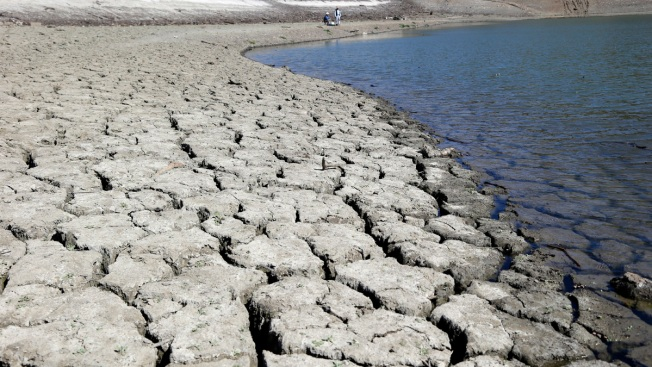"California Drought Spurs New Look at ""Cash for Grass"" Programs"