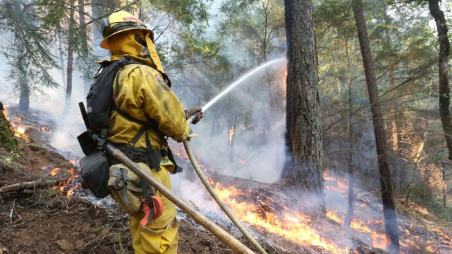 Bouncing Back From Wildfires Difficult When Fire Season Never Ends