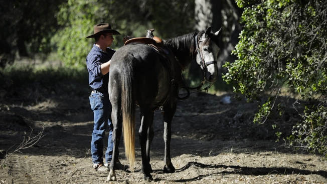 'There Are People Who Care': Horseman Riding Across US to Call Attention to Agent Orange