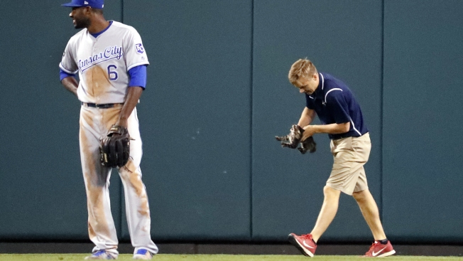 Cardinals catch Rally Cat fever after lucky feline dashes across field