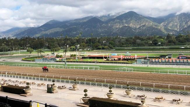 24th Horse Dies at Santa Anita Since Dec. 26