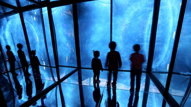 Museums Across San Diego County Offer Half-Priced Days