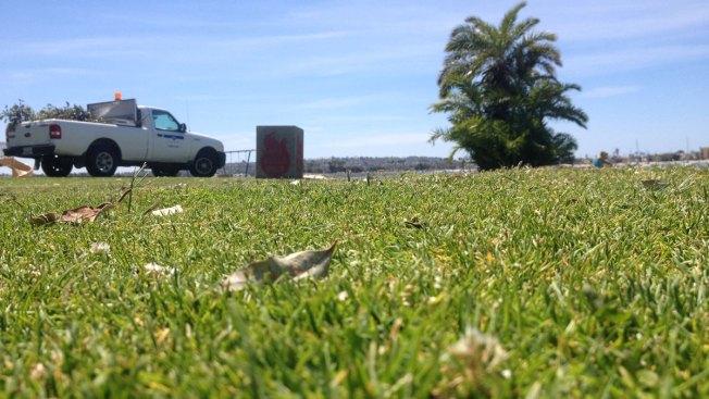 """Razor Blades """"Planted"""" in Bonita Cove Park: SDPD"""