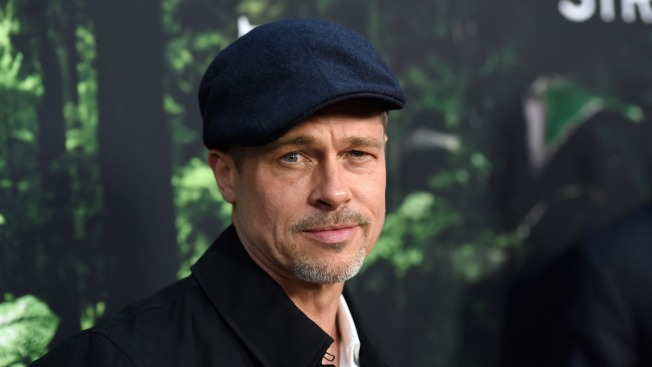 Brad Pitt Makes Rare Showing at Hollywood Premiere