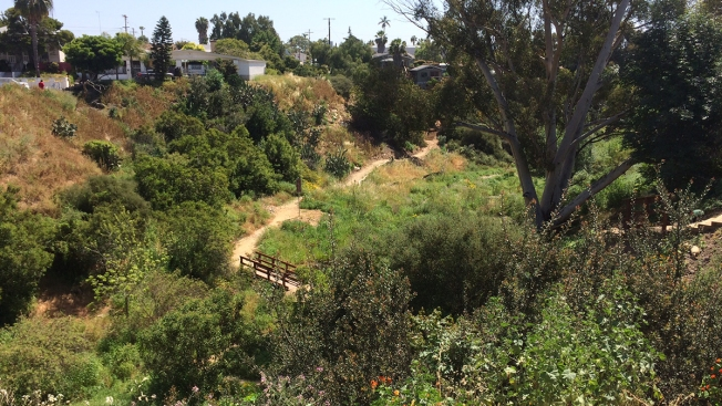 New Hiking Trails Open in City Heights