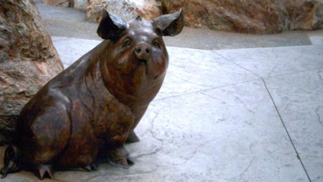 Crooks Nab $15K Bronze Pig Statue