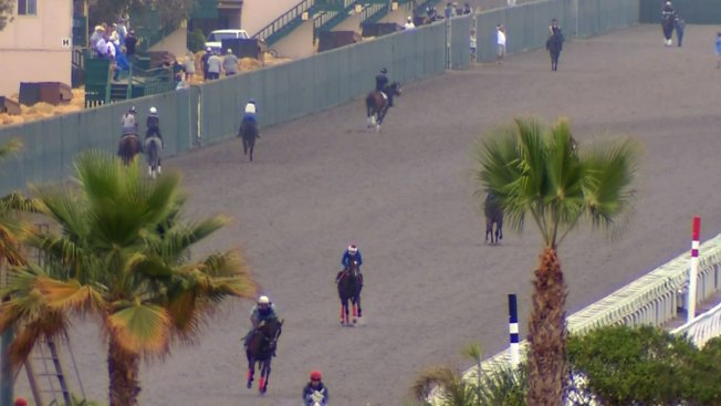 Del Mar Makes Changes to New Turf Surface