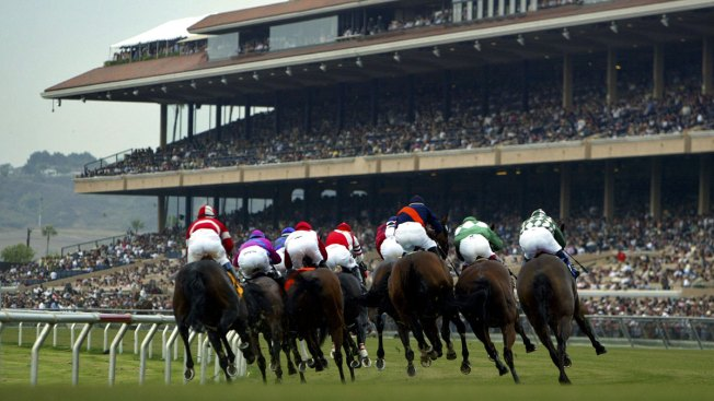 Del Mar Gears Up for Inaugural November Racing Season
