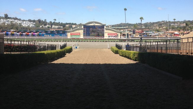 Latest Del Mar Horse Injury Raises Concern; Club Defends Track