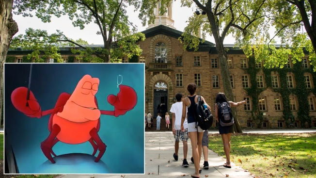Princeton A Cappella Group Cuts Disney Song Amid Criticism of 'Toxic Masculinity'