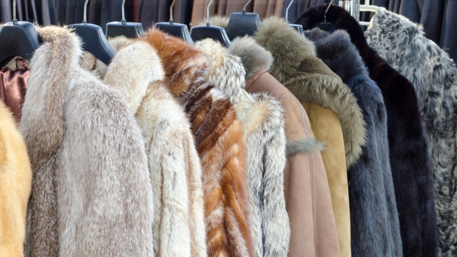 Fur Activists Accused of Cross-Country 'Domestic Terrorism'