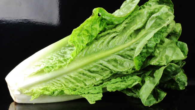 1st Death Reported in Romaine Lettuce E. Coli Outbreak