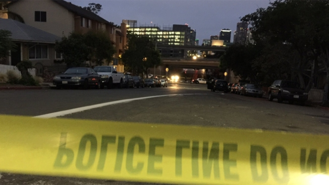 Screams lead police to suspect in San Diego homeless attacks