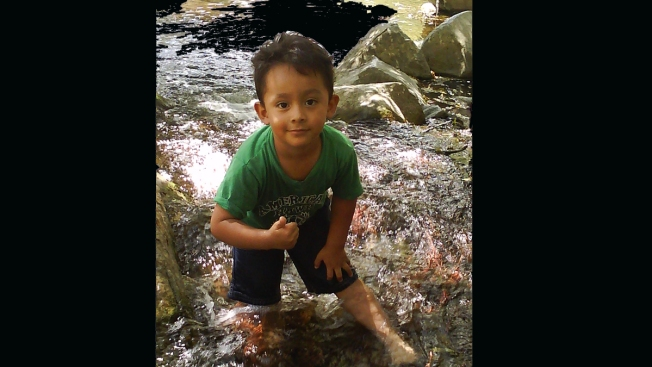 Parents to Driver: 'You Took My Son's Life'