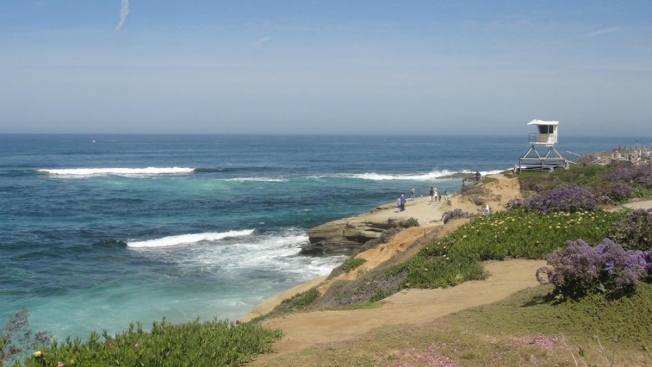La Jolla Shores Among Top 25 Travel Attractions in U.S.: TripAdvisor