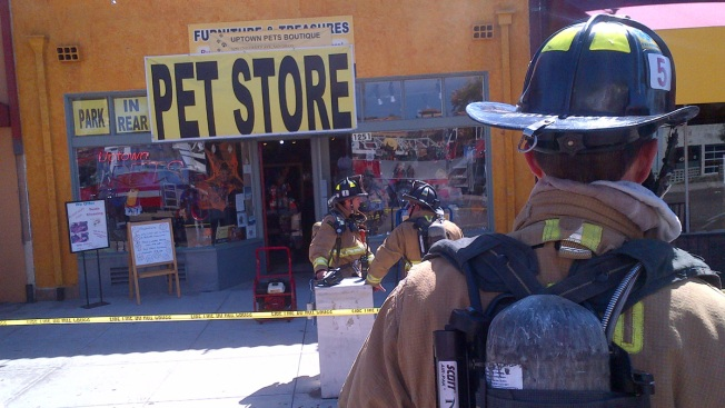 Hillcrest Pet Shop Catches Fire