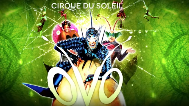 Cirque Du Soleil's 'OVO' is Coming to San Diego