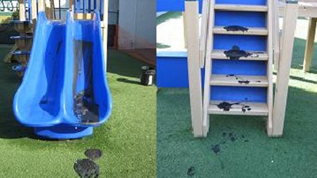 Vandals Cause $5K in Damages at Preschool Playground
