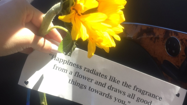 Sunflowers, Kind Notes Left on Cars at Rancho Bernardo Parking Lot